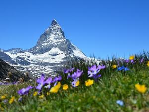 Шест нестандартни идеи за пътуване през лятото