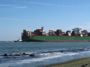 СТО прогнозира забавяне на глобалната търговия през третото тримесечие
