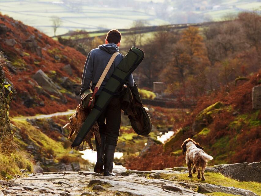 На 11 август се открива ловът на пъдпъдъци, гургулици, гривяк, горски бекас и обикновена бекасина