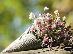 Страната ни е най-големият производител на билки в Европейския съюз