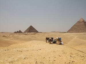 България и Египет ще си сътрудничат в сферата на туризма