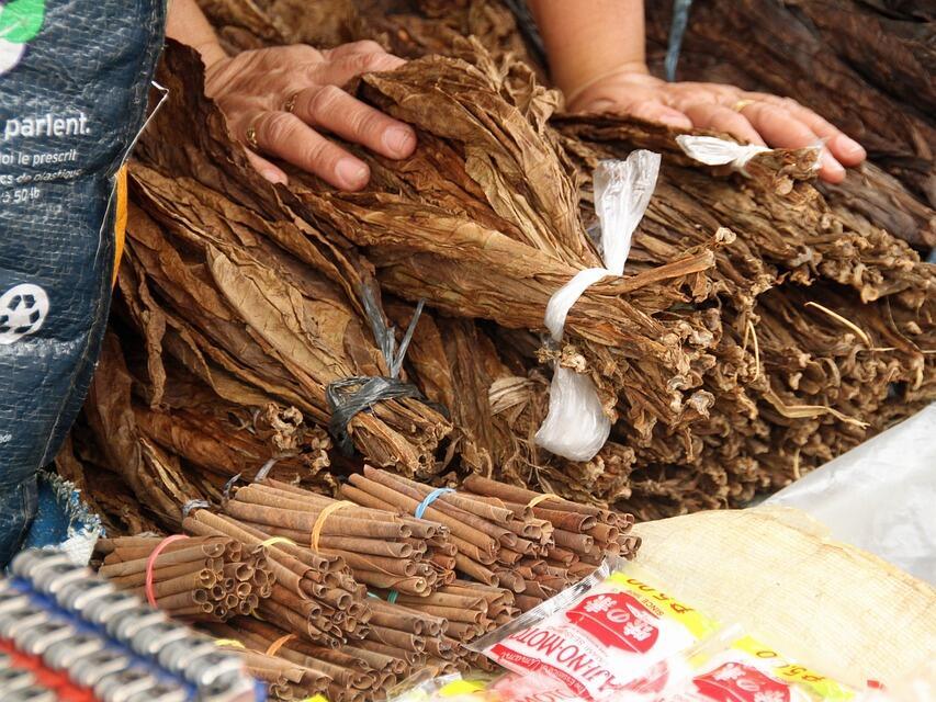 Над 1,3 млн. лв. са изплатени към момента на тютюнопроизводители по de minimis