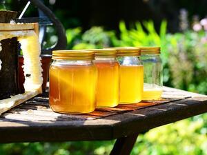 България е сред най-големите износители на мед на вътрешния пазар