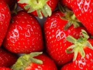 Български берачки на ягоди могат да получават по 35,42 евро на ден в Испания