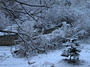 <p>Снегът успя и да натрупа снежна покривка</p>