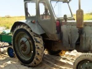 През 2010 г. са били преброени 370 222 земеделски стопанства