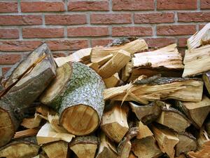 Миналата година нямаше дърва. Тази година няма търсене