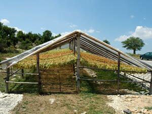 Отпускат се допълнително средства за земеделските производители