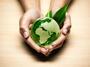 Банки се борят за опазването на природата