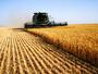 Зърнопроизводителите излизат на национален протест
