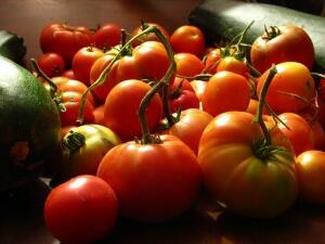 Със 72% е нараснал износът на български зеленчуци за една година