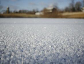 Студовете в САЩ могат да вдигнат цената на пшеницата