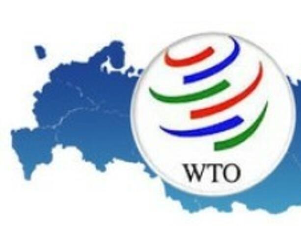 ЕС приветства споразумението между Русия и Грузия за СТО