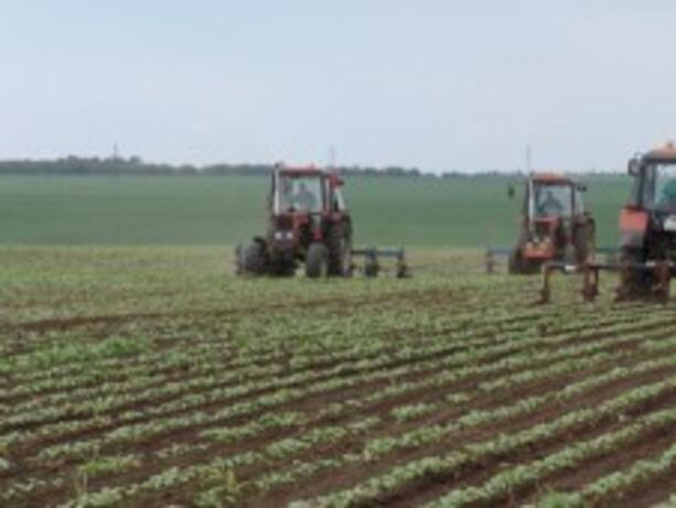 Одобриха нови 39 проекта по мярката за модернизиране на земеделските стопанства