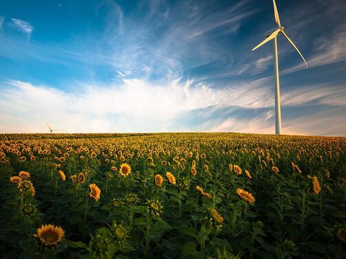 Представители на 275 малки производители на електроенергия от възобновяеми енергийни