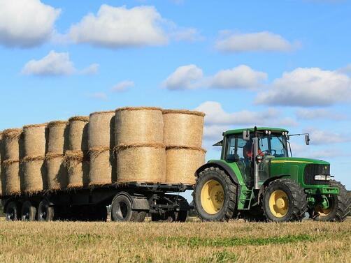 Снимка: Стотици млади фермери получават по 25 хил. евро за стартиране на бизнес