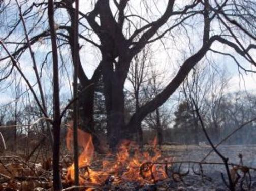 Голям пожар избухна на гръцкия остров Закинтос. Огънят наложи евакуация