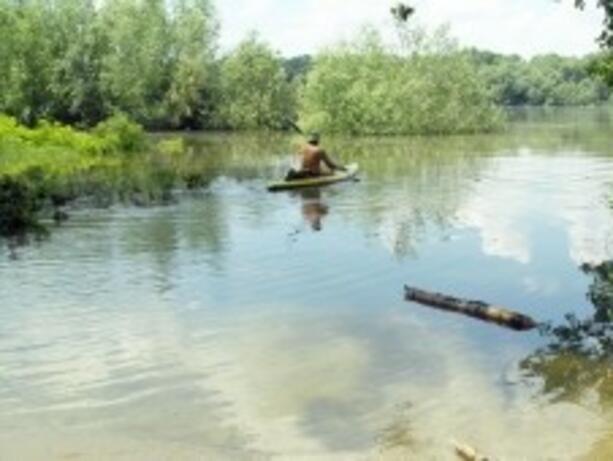 Рекордно ниски нива на р. Дунав при Ново село и Русе
