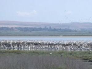 Бургас с правила за опазването на защитените зони и паметниците