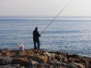 МЗХ ще управлява рибарските пристанища във Варна и Балчик