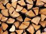 Протестираха срещу продажбата на дървесина на борсата*