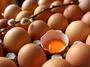 Няма спекулация с цените на яйцата, твърдят производителите