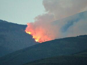 Пожарът на Витоша вече унищожава 250 декара гори