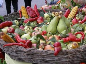 Евросъюзът е компенсирал фермерите с милиард и половина евро за загубения руски пазар