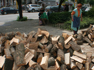 В складовете на търговските фирми цената за дървата на огрев