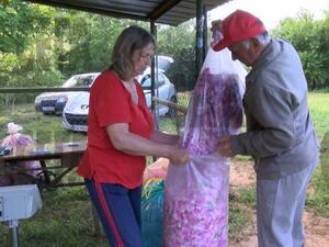 Вече няма неизкупени количества розов цвят, увери министър Порожанов